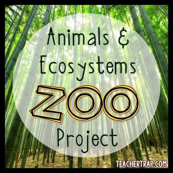 Animal Research and Ecosystem Project